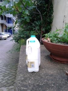 picture of milk bottles