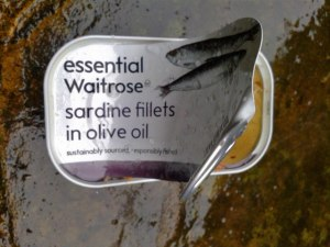 picture of an empty sardine tin